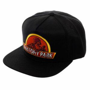 gorra rick y morty anatomy park